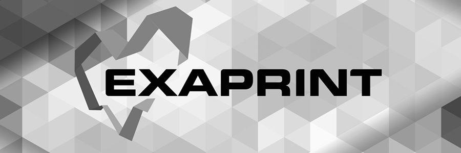 exaprint log