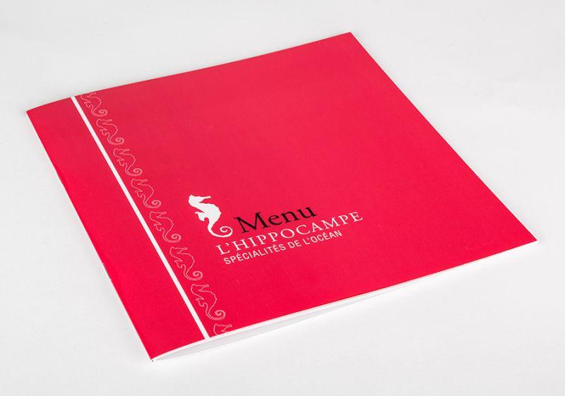 Brochure pelliculée rose