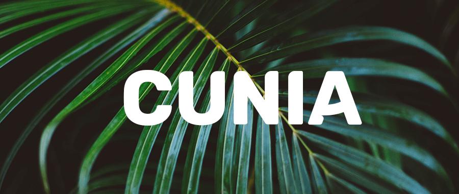 bannière cunia typographie gratuite