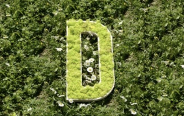 exaprint histoire logo végétal