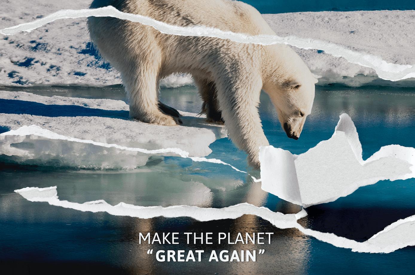 ours polaire fonte des glaces réchauffement climatique